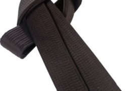 Lista de cinturones negros